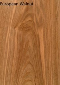 Shane Tubrid - European Walnut sample pic 2