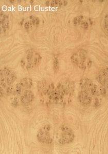 Shane Tubrid - Oak Burl Cluster Veneer Sample