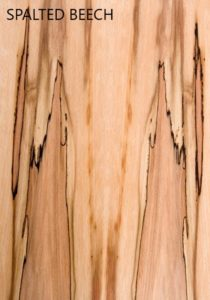 Shane Tubrid - Spalted Beech sample pic