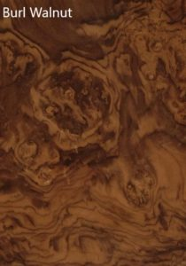 Shane Tubrid - Walnut Burl Veneer Sample